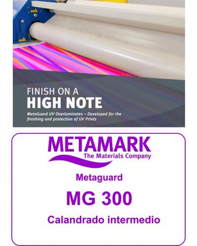 Metaguard MG 300